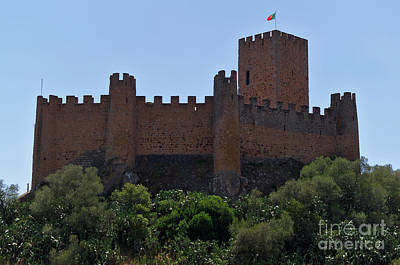 Photograph - Templar Castle Of Almourol In Tomar by Angelo DeVal