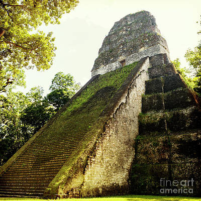 Photograph - Temple 5 Tikal Guatemala by Tim Hester