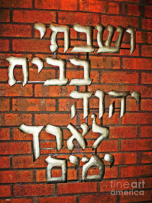 Photograph - Temple Adath by Larry Oskin