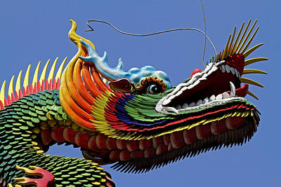 Photograph - Temple Dragon by Marcus Donner