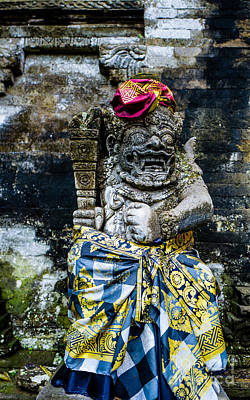 Photograph - Temple Guardian by M G Whittingham