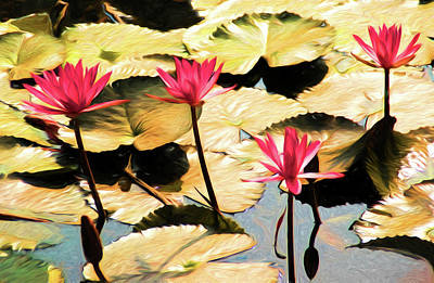 Mixed Media - Temple Lotus Pond by Dennis Cox Photo Explorer