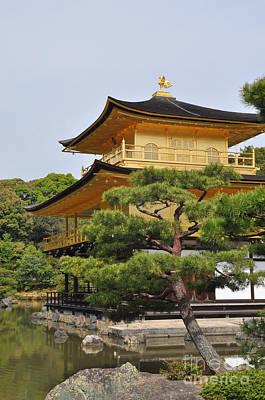 Temple Of The Golden Pavilion Art Print