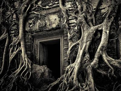 Cambodian Painting - Temple Strangled By Tree - Cambodia by The Candy Trail