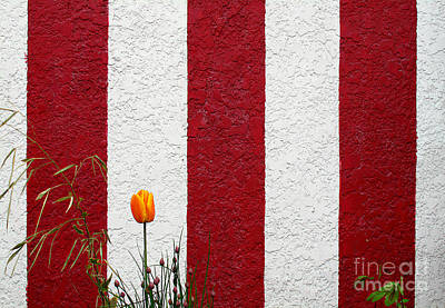 Art Print featuring the photograph Temple Wall by Ethna Gillespie