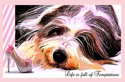 Scottish Dog Digital Art - Temptation by Kathy Kelly