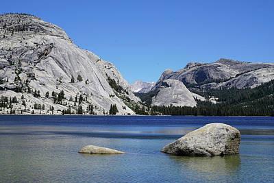 Photograph - Tenaya Lake And Mount Connesss by Dale Matson