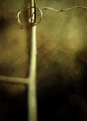 Tendril Art Print by Rebecca Sherman