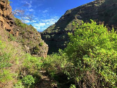 Photograph - Tenerife Landscape Barranco De Ruiz by Matthias Hauser