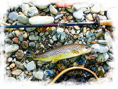 Photograph - Tenkara Brown Trout by Joe Duket