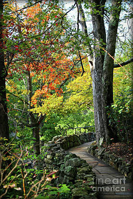 Photograph - Tennessee Autumn Path by Carol Groenen