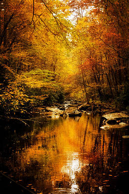 Yellow Photograph - Tennessee Mountains Autumn by Greg Mimbs