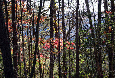 Southern Landscape Photograph - Tennessee No. 8 by Marcum and Marcum