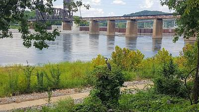 Photograph - Tennessee River Railroad Bridge With Heron by Rachel Hannah