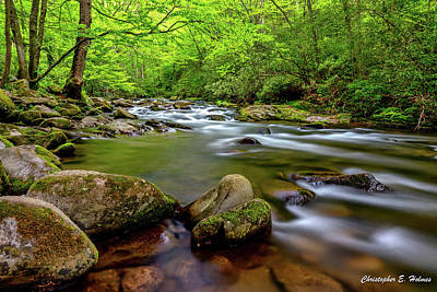 Photograph - Tennessee Stream by Christopher Holmes