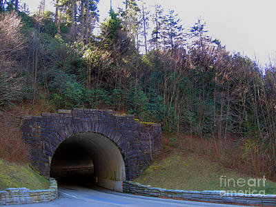 Princess Diana - Tennessee Tunnel by Skip Willits