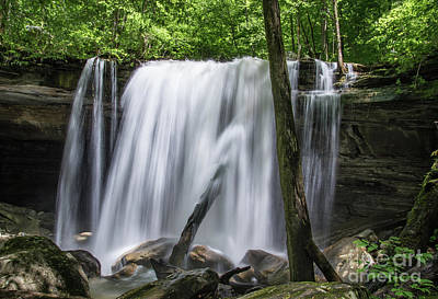 Photograph - Tennessee Waterfall by Christopher L Nelson