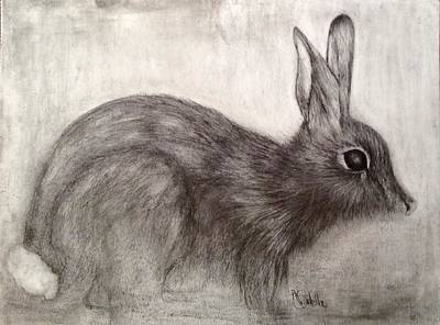 Painting - Tennessee Wildlife Cottontail Rabbit by Annamarie Sidella-Felts