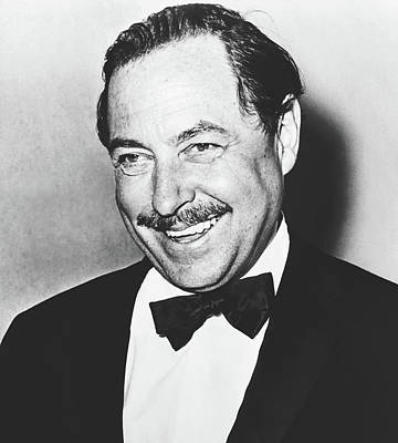 Photograph - Tennessee Williams 1964 by Library Of Congress