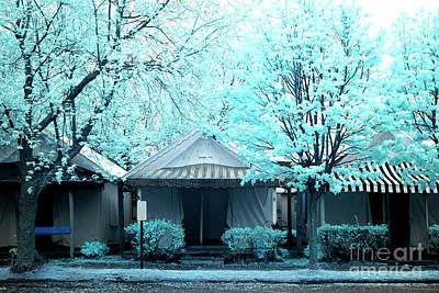 Photograph - Tents Among The Blue Trees by John Rizzuto