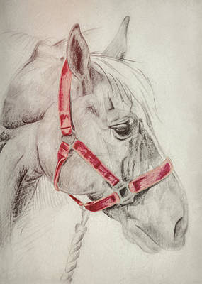 Tequila Sketch Art Print by JAMART Photography