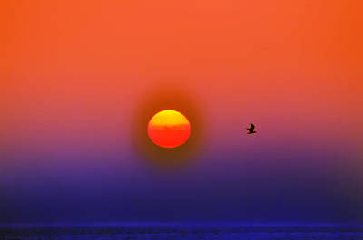 Tequila Sunrise Art Print by Bill Cannon