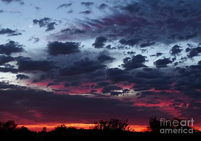 Photograph - Tequila Sunrise by Deniece Platt