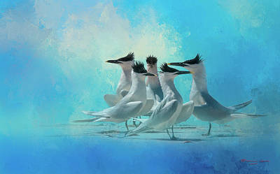 Tern And Look Art Print