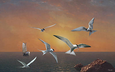 Digital Art - Terns In The Sun by M Spadecaller