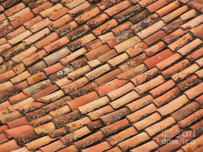 Photograph - Terra Cotta Tiles by Michele Penner