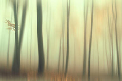 Impressionism Photos - Terra Incognita. Impressionism by Jenny Rainbow