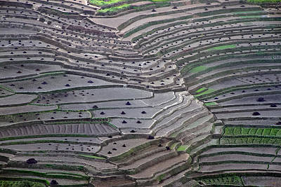 Pattern Photograph - Terrace Fields by Ajay Pant