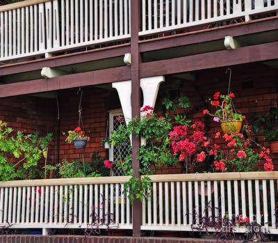Terrace House With Flowers 2 Art Print