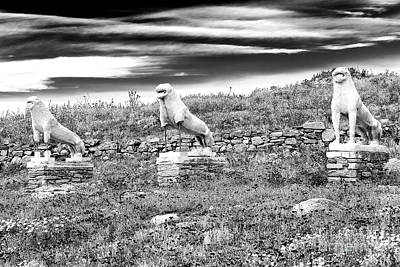 Photograph - Terrace Of The Lions On The Island Of Delos by John Rizzuto
