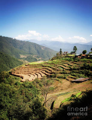 Photograph - Terraces by Scott Kemper