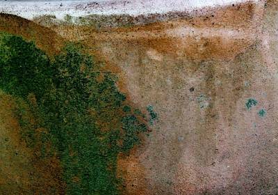 Photograph - Terracotta Abstract. by Denise Clark