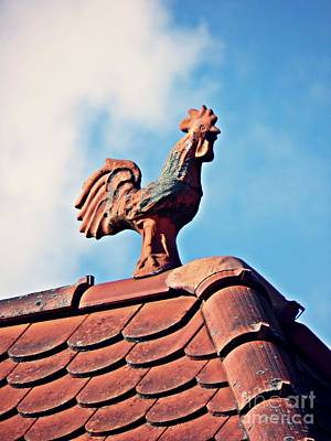 Photograph - Terracotta Rooster by Sarah Loft