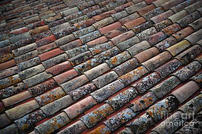 Terracotta Tile Original by Liesl Marelli