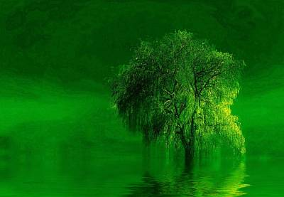 Photograph - Terre Verde by Valerie Anne Kelly