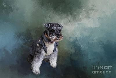 Photograph - Terrier by Eva Lechner