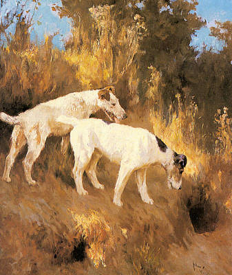 Painting - Terriers On The Scent by Celestial Images