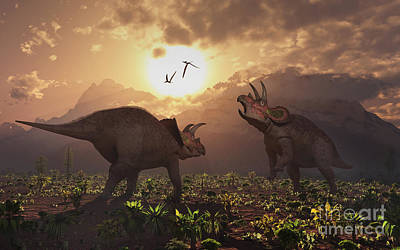 Territorial Confrontation Between Two Art Print