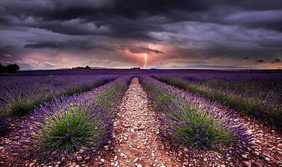 Photograph - Tesla Fields by Jorge Maia
