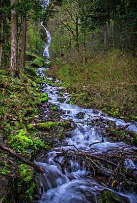 Photograph - Wahkeena Falls by Lynn Bauer