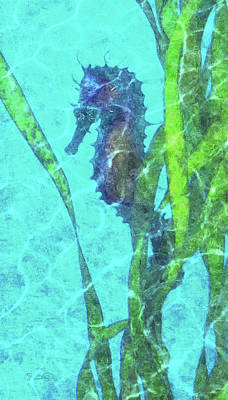 Photograph - Wild Seahorse 5 by Susan Molnar
