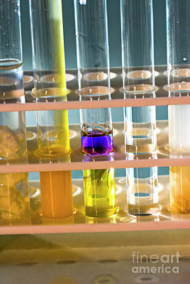Testtube Photograph - Test Tubes In A Rack  by Tal Bedrack