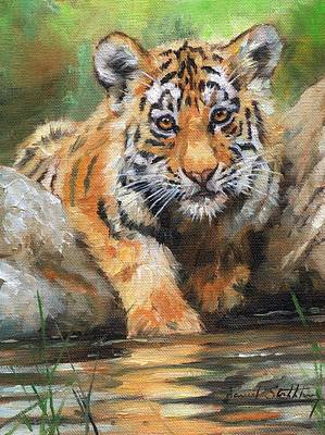 Tiger Painting - Testing The Water by David Stribbling