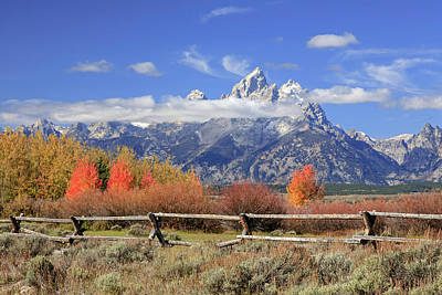 Photograph - Teton Autumn by Jack Bell
