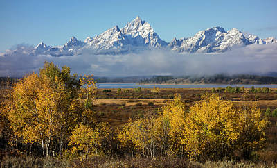 Photograph - Teton Autumn by Loree Johnson
