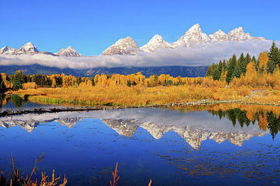 Photograph - Teton Autumn Mirror by Greg Norrell